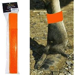Intrepid International Cattle Leg Bands, Neon Orange