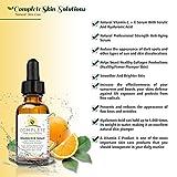 Natural Vitamin C E Serum with Ferulic and