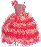 Big Girls' Princess Pageant Girl Ball Gown Flowers Girls Dresses Fuchsia Gold 8
