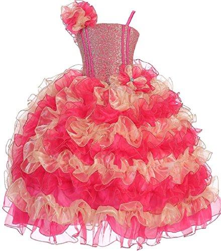 Little Girls Princess Pageant Girl Ball Gown Flowers Girls Dresses Fuchsia Gold 6 by Dreamer P
