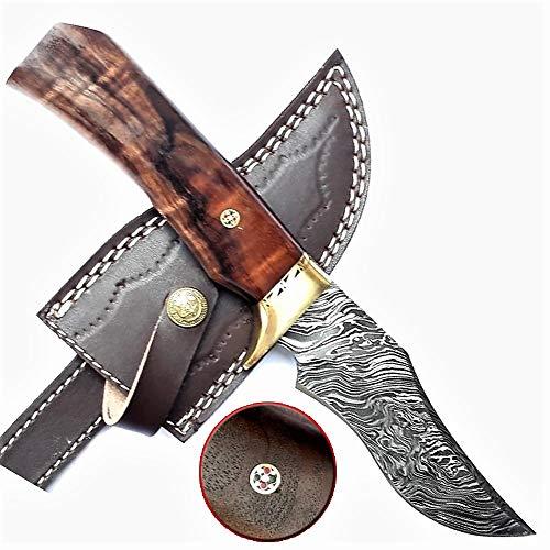 Falcon Blades Damascus Steel FBWW-38 Custom Handmade Hunting Camping Tracker Knife 10 Inch ()