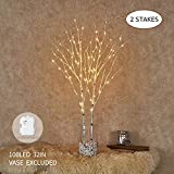 lighted tree branches Hairui Lighted Artificial Twig Birch Tree Branch with Fairy Lights 32IN 100 LED Battery Operated Lighted White Willow Branch for Christmas Home Decoration Indoor Outdoor Use 2 Pack (Vase Excluded)