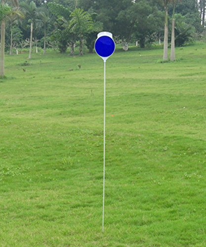 /4inch Solid Driveway Marker with Double Side Blue Reflector 4.5inchx3inch(12pack) (4.5 Inch Reflector)