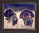 Pair of Wild Turkeys Hunting Animal Bird Picture Mahogany Framed Wall Decor Art Print (18x22)