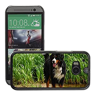Hot Style Cell Phone PC Hard Case Cover // M00130274 Dog Animal Breed // HTC One M8