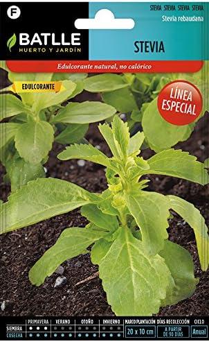 Semillas Aromáticas - Stevia - Batlle