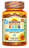 Best Sundown Naturals probiotic supplement - Sundown Naturals Kids Probiotic Gummy, 30 Count Review