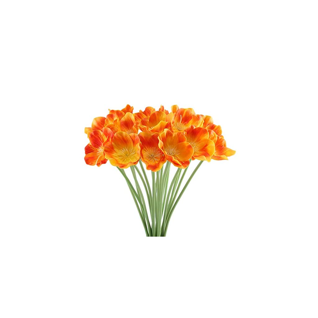 HO2NLE-20-Pack-PU-Poppies
