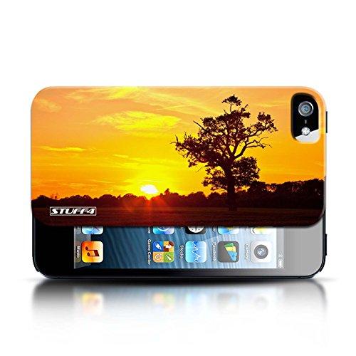 Etui pour Apple iPhone 5/5S / Chêne d'orange conception / Collection de Coucher du Soleil