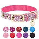 Blueberry Pet 4 Colors Glam Life Lace Floral Stamping Dog Collar in Iconic Pink, Small, Neck 9-12.5'', Adjustable Collars for Dogs