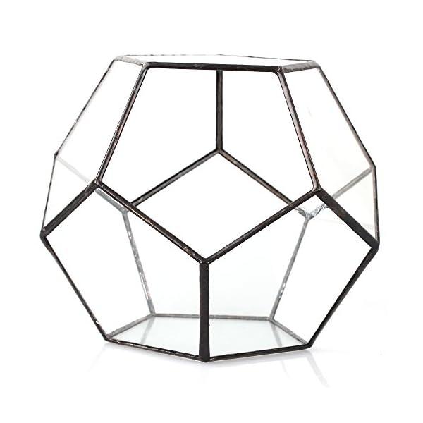 Black Glass Geometric Terrarium Container Modern Tabletop Window Sill Decor Flower Pot Balcony Planter Diy Display Box For Succulent Fern Moss Air Plants Miniature Fairy Garden Gift No Plants