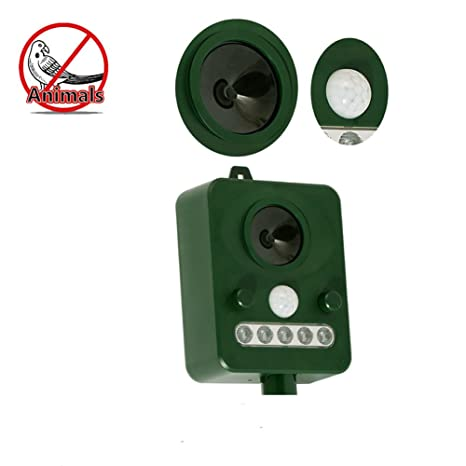 Amazon.com : Solar Bird Repellent Animal Driver Infrared FM Drive Cat Drive Dog Sensor : Garden & Outdoor