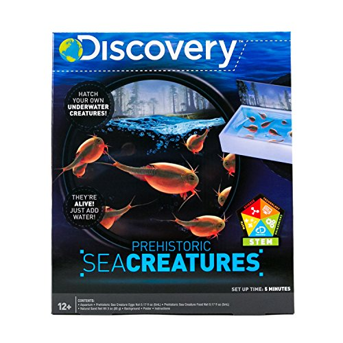 Discovery Kids Prehistoric Sea Creatures by Horizon Group USA