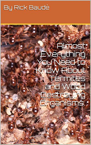 almost-everything-you-need-to-know-about-termites-and-wood-destroying-organisms