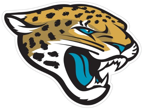 Siskiyou NFL Jacksonville Jaguars 8