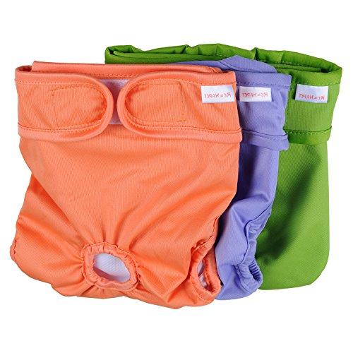 Dog Diapers Female Washable He&Ha Pet Female Dog Padded Diaper Reusable Dog Sanitary Panties Set of 3 (Small)