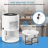 Homemaxs Dehumidifier 900ml, 【2020