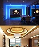 MINGER LED Strip Lights 16.4ft, RGB Color Changing