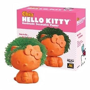 Amazon.com: Chia Pet Chia Hello Kitty 1 Ea: Health ...