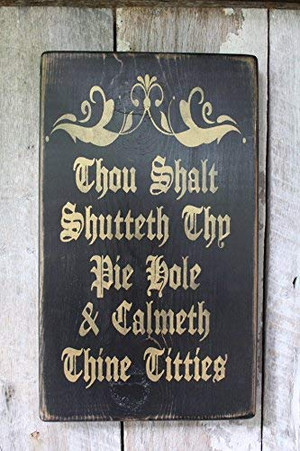 Thou Shalt Shutteth Thy Pie Hole Calmeth Thine Titties Funny Hippie Decor Wiccan Dragon Gypsy Art Babe Cave Dorm Funny Quote Plaque Home Craft Sign for Women Men