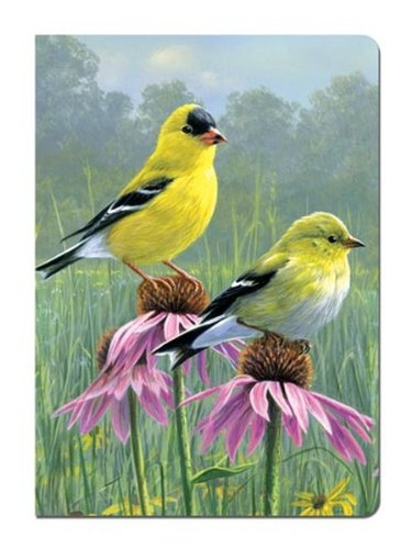 - Tree-Free Greetings Journal, 160 Ruled Pages, Recycled, 5.5 x 7.5 Inches, Goldfinch and Coneflowers, Multi Color (72027)