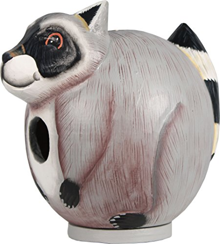 Songbird Essentials SE3880099 Raccoon GORD-O Bird House For Sale
