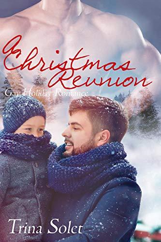 A Christmas Reunion.A Christmas Reunion Gay Holiday Romance