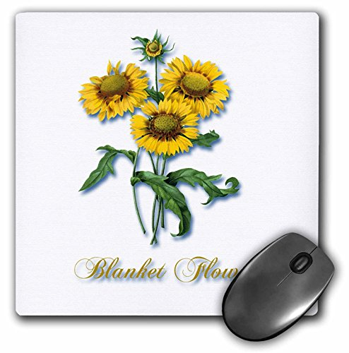 (3dRose BLN Flowers and Fruits by Pierre Joseph Redoute - Blanket Flower, Botanical Print of Bright Yellow Flowers - MousePad (mp_171168_1))