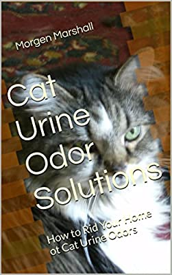 Cat Urine Odor Solutions: How to Rid Your Home ot Cat Urine Odors