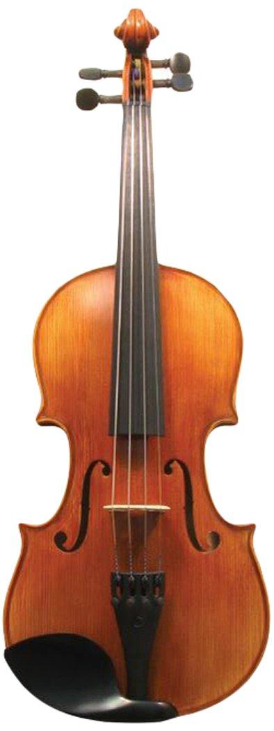 Corde di Salice CS135VN1/8 Advanced Beginner Violin Package - Terzo, 1/8
