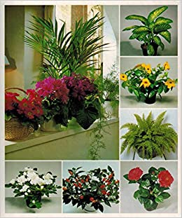 Stupendous Success With House Plants 3 Ring Binders Including Groups Interior Design Ideas Clesiryabchikinfo