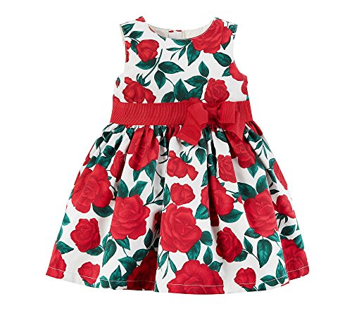 Carter's Baby Girls' Rose Floral Bow Dress 24 Months by Carter's