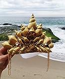 Easter Sale Starfish Gold Mermaid Crown by Star Stuff Boutique Mermaid Headress, Gold Headdress, High Energy Mermraid Headpiece, Seashell Tiara
