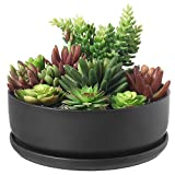 8 Inch Modern Round Black Ceramic Cactus Succulent Planter Bowl with Removable Saucer
