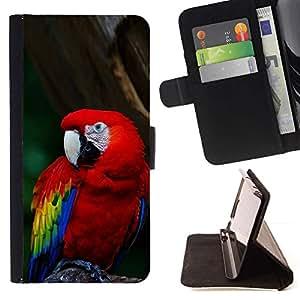 Momo Phone Case / Flip Funda de Cuero Case Cover - Enfriar loro - HTC DESIRE 816
