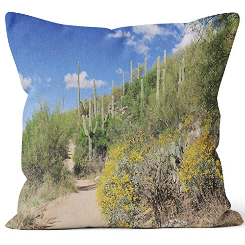 Nine City Hiking Trail in Bear Canyon in Tucson Throw Pillow Cushion Cover,HD Printing Decorative Square Accent Pillow Case,36