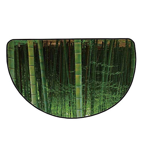 - Bamboo Comfortable Semicircle Mat,Bamboo Forest Exotic Fresh Jungle Vision with Tall Shoots Tropical Wonderland Print Decorative for Living Room,35.4