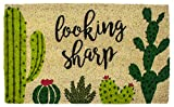 """Entryways Looking Sharp, Coir with PVC Backing Doormat, 17"""" X 28"""" X .5"""""""