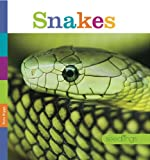 Seedlings: Snakes, Kate Riggs, 0898128889