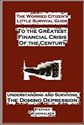 The Worried Citizen's Little Survival Guide to the Greatest Financial Crisis of the Century (Understanding and Surviving the Domino Depression)
