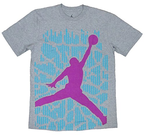 Air Jordan Mens Aj Xx9 29 Jumpman Graphic T-shirt (Large, Gray)