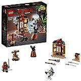 Lego Spinjitzu Training Building Sets