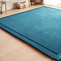 wonbye Luxury Large Bedroom Carpet Coral Velvet Mat Memory Foam Bath Rug Rectangle Carpet Turquoise