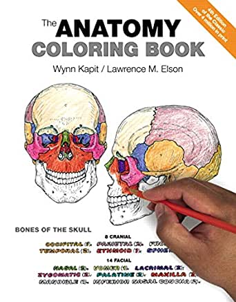 Anatomy Coloring Book, The 4, Wynn Kapit, Lawrence M. Elson - Amazon.com
