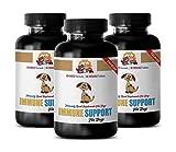 Elderly Dog Support - Immune Support and Health - for Dogs Treats - Premium Advanced Formula - Dog Skin Supplements - 270 Treats (3 Bottle)