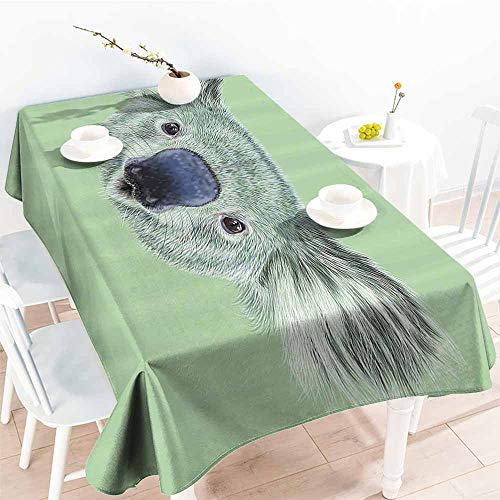 Easy Care Tablecloth Animal Tropical Koala Bear Portrait Cute Jungle Hipster Zoo Wild Graphic Print Mint and Reseda Green Excellent Durability W70 xL102