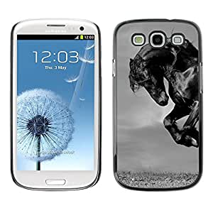 Plastic Shell Protective Case Cover    Samsung Galaxy S3 I9300    Mustang Mane Gallop Stallion @XPTECH