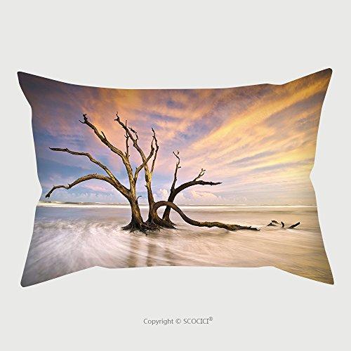 South Beach Chaise Full Cushion - 9