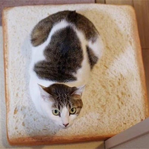 Cute Toast Bread Shape Cat Kitten Mat Bed Sponge Cushion Pad For Dog Cat Kennel Cozy Portable Pet Supplies Soft Blanket