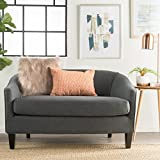 Isolde Modern Petite Loveseat (Fabric or Leather) (Dark Grey Fabric) Review
